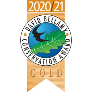 DB-2020-21-gold award